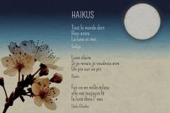Texte-HAIKUS_redimensionner